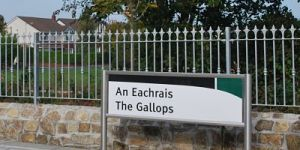 gallops_luas_opt2