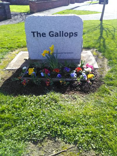 Plant boxes at the Gallops entrance