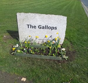 flowers at Gallops name stone
