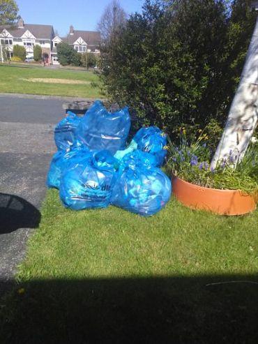 Gallops clean up April 2017