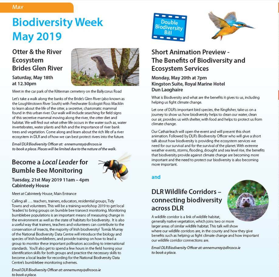 Biodiversity week and the Bumble Bee workshop hosted by
