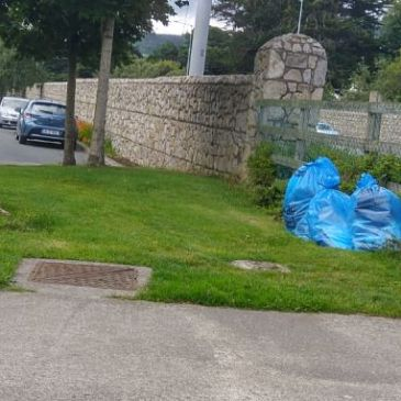 Gallops estate clean up, Dublin 18