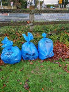 rubbish collected at clean up in Dublin 18